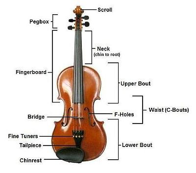 about-violin-western-music-instrument
